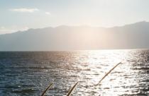 波光粼粼的抚仙湖