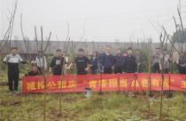 重庆城投集团团委开展学雷锋活动月主题活动